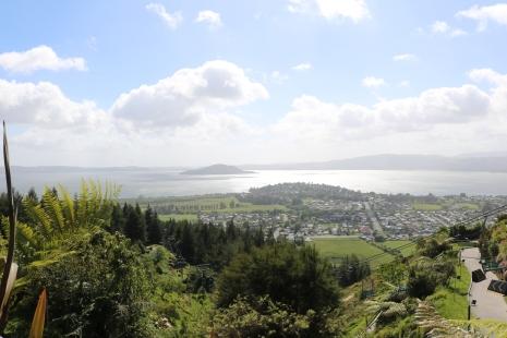Vaade gondolist Rotoruale/ View from gondola to Rotorua
